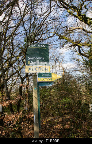 Countryside auction signs amidst woodland near Colyton, Devon, - Stock Image