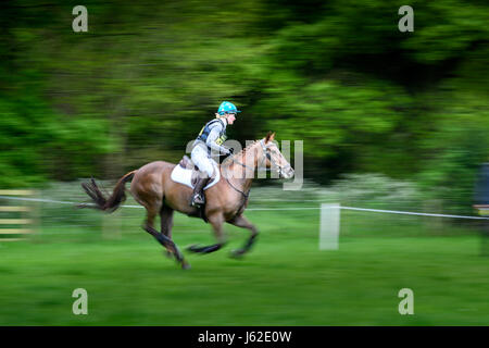 Rockingham Castle grounds, Corby, England. 19th May 2017.  Genevieve Walters and her horse Dorissomo gallop past - Stock Image