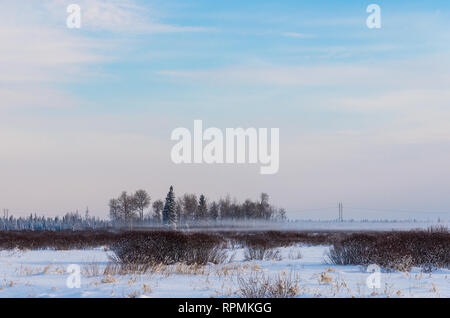 Morning fog in a wide-open field in winter. Duluth, Minnesota, USA. - Stock Image