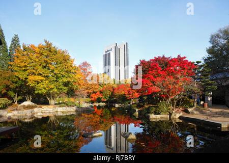 Radisson Blu Hotel, Japanischer Garten und Teich im Herbst, Hamburg, Deutschland, - Stock Image