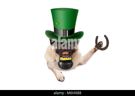 st patricks day pug puppy dog with green leprechaun hat, holding horseshoe and pot with golden coins, isolated on - Stock Image