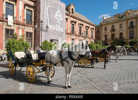 Popular tourist spot with horse drawn carriages in Plaza Virgen de los Reyes, Seville, Spain - Stock Image