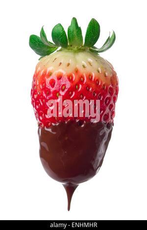 Fresh strawberry dipped in dark chocolate. Close up. - Stock Image