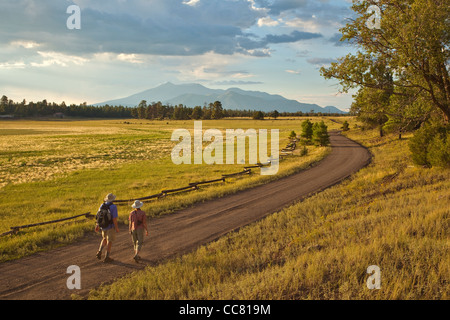Walkers on road across Anderson Mesa with San Francisco Peaks in distance, Coconino National Forest, near Flagstaff, - Stock Image