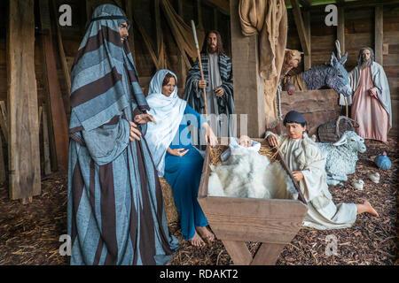Nativity Scene,Baby,Jesus,Virgin,Mary,Joseph,Canterbury Cathedral,Canterbury,Kent - Stock Image