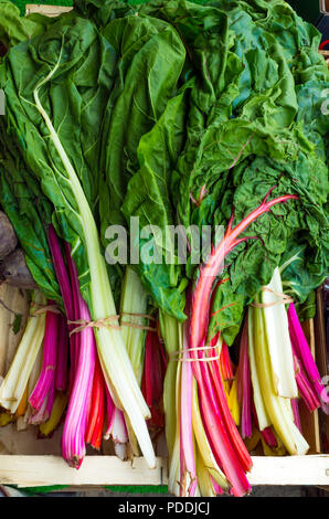 Rainbow chard displayed for sale in a greengrocers shop in North Yorkshire, UK. - Stock Image