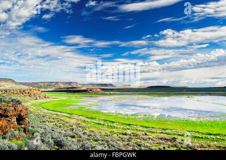 A wetland area in Malheur National Wildlife Refuge in southeastern Oregon. - Stock Image