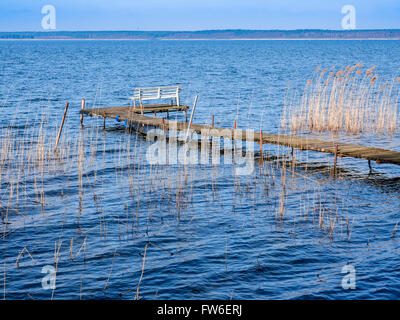 Bench at end of small pier,  lake Flesensee, Mueritz, Mecklenburg-Vorpommern, Germany - Stock Image