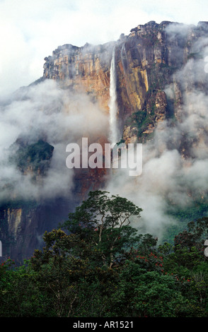 Angel Falls Amazon Jungle Venezuela - Stock Image