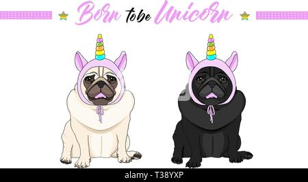 cute vector black and fawn pug puppy dogs sitting down, wearing pink bonnet with unicorn horn with rainbow colors - Stock Image