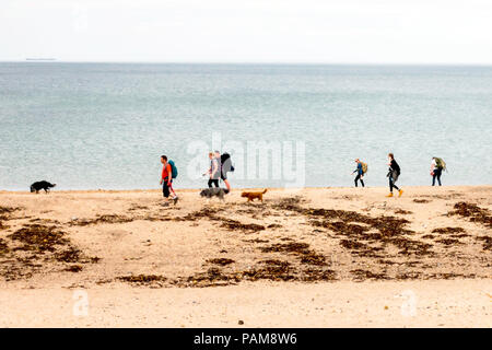 A group of walkers and their dogs walking Northwards on a North Yorkshire Beach - Stock Image