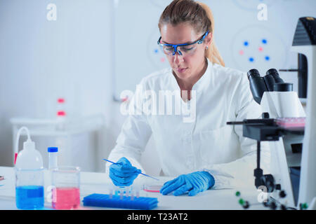 Female science researcher working in laboratory. - Stock Image