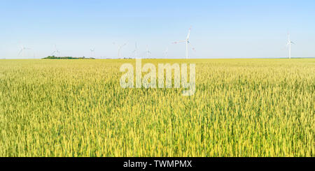 Distant wind power generators in the green field. Selective focus on the turbines, copy space on the field - Stock Image
