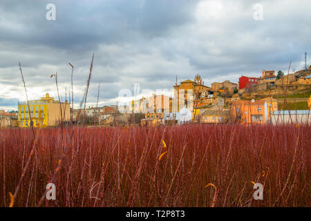 Wicker field and overview of the village. Villaconejos de Trabaque, Cuenca province, Castilla La Mancha, Spain. - Stock Image