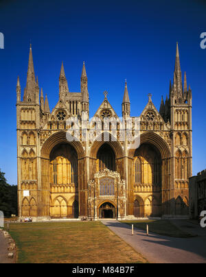 Peterborough Cathedral, Cambridgeshire, England, UK. - Stock Image