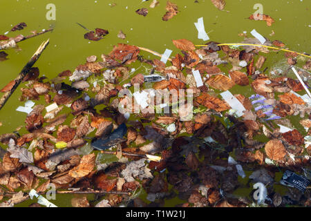 Fallen Leaves and litter on pond surface - Stock Image