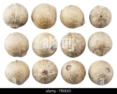 Set of white peppercorns isolated on white background. - Stock Image