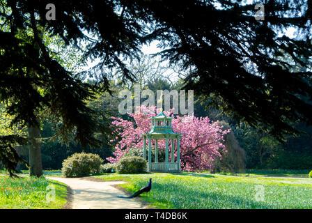 Bagatelle Park, Paris, France - Stock Image
