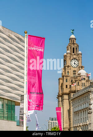 Flag on Liverpool Museum with Liver Building close by. - Stock Image