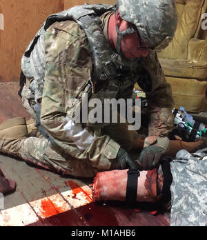 Cal Guard Army medics from across the state participated in combat environment casualty assessment training on Aug. - Stock Image