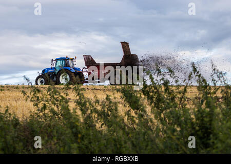 Tractor pulling a trailer working in a field, Lisburn, N.Ireland. - Stock Image