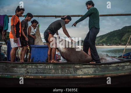 Fishermen with amanta ray in southern Myanmar - Stock Image