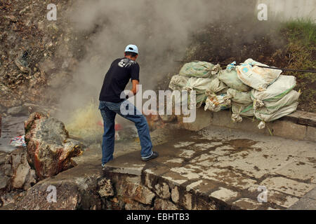 Man cooking sacs of corncobs in a hot spring with naturally boiling water in Furnas, island of São Miguel, - Stock Image