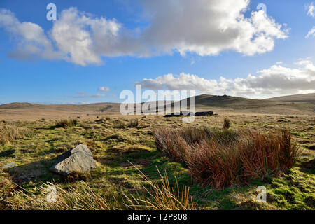 Dartmoor moorland looking across open moors toward Oke Tor, Devon - Stock Image