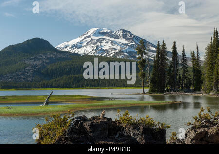 A Golden Mantled Ground Squirrel (Ammospermophilus Lateralis) gets into the view of Oregon's South Sister at Sparks Lake on the Ray Atkeson Memorial T - Stock Image