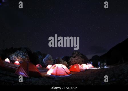 Chengdu. 23rd Apr, 2019. Photo taken on April 23, 2019 shows outdoor activity enthusists camping at night near blooming rhododendrons in Yanbian County of Panzhihua City, southwest China's Sichuan Province. Over 100,000 mu (66,667 hectares) wild rhododendrons are in bloom in Yanbian County from February to May. Credit: Jiang Hongjing/Xinhua/Alamy Live News - Stock Image
