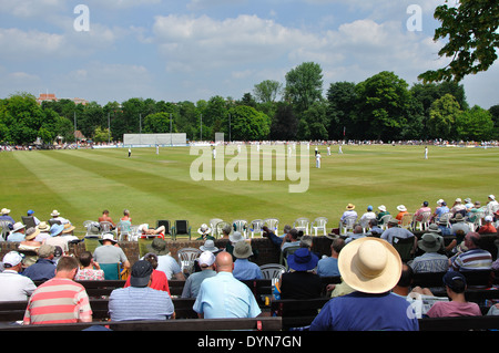 spectators watching county cricket, Derbyshire v Yorkshire at Queens Park, Chesterfield, Derbyshire, England on 18th July 2013 - Stock Image