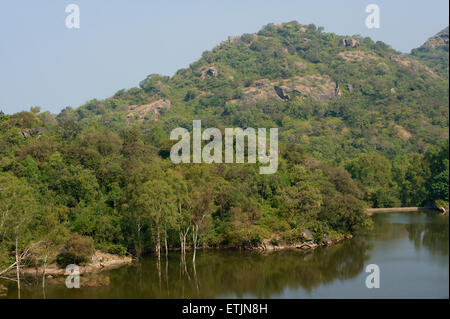 Roadside lake near Mount Abu, Rajasthan, India - Stock Image