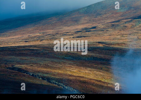 Autumn colors in the vast landscapes in Dovrefjell national park, Dovre, Norway. - Stock Image