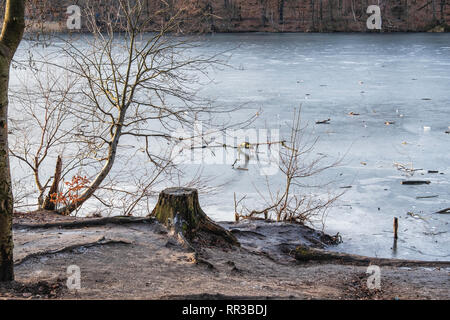Krumme Lanke Lake, Berlin, Germany. Frozen water and bare trees in icy winter - Stock Image