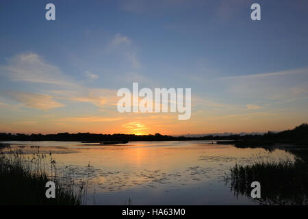Looking over Rockland Broad on the Norfolk Broads at sunset - Stock Image