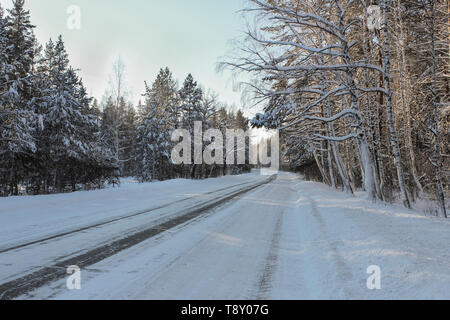 Winter road, which goes straight through the forest - Stock Image
