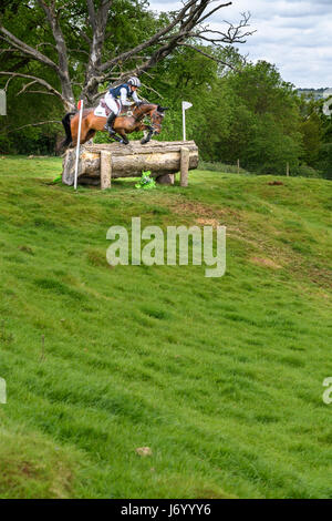 Caroline Powell on her horse Spice Sensation clears a tree trunk obstacle before descending a hill on a sunny day - Stock Image