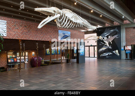 The entrance hall at the Fisheries and Maritime Museum, Esbjerg, Denmark - Stock Image