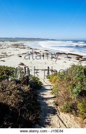 Asilomar State Beach is a 107-acre (43 ha) site is located in Pacific Grove and offers overnight lodging and views - Stock Image