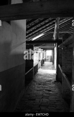 Auschwitz Birkenhau Atrocities - Stock Image