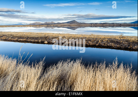 A pond and foothills at Lower Klamath National Wildlife Refuge in norther California in February. - Stock Image