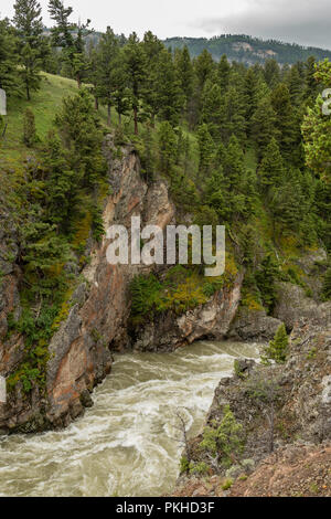 Hellroaring Creek Carves Through Canyon in Yellowstone Wilderness - Stock Image