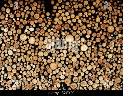 Neatly Stacked chopped logs - Stock Image