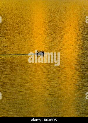 Almost golden color bright against setting sun reflection on surface of sea small wooden fishing boat silhouette - Stock Image