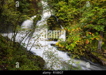 The plummeting water of the River Brathay in spate at Colwith Force, Lake District, Cumbria, UK - Stock Image