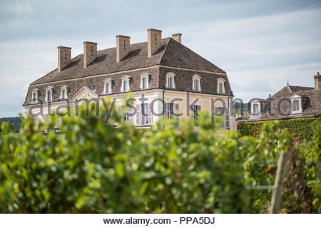 Château de Pommard, Route des Grands Crus   Burgundy France - Stock Image
