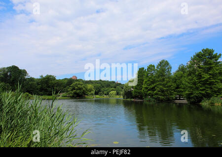 View of Harlem Meer facing west in Northern Central Park, Manhattan on JULY 4th, 2017 in New York, USA. (Photo by Wojciech Migda) - Stock Image