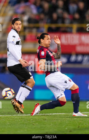 Bologna, Italy. 13th May, 2019. Federico Javier Santander Mereles (Bologna) during the Italian 'Serie A' match between Bologna 4-1 Parma at Renato Dall Ara Stadium on May 13, 2019 in Bologna, Italy. Credit: Aflo Co. Ltd./Alamy Live News - Stock Image