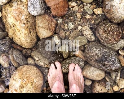 Feet in ice cold mountain stream, New Zealand - Stock Image