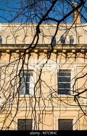 Windows, stone facade and tree branches in the Conservation Area of Clifton, Bristol, UK. - Stock Image